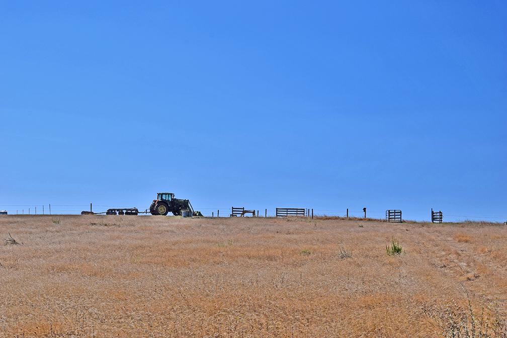 tractorweb.jpg