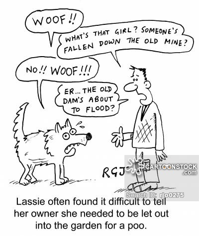 animals-lassie-television_animal-pets-owner-communicating-rjo0275_low.jpg