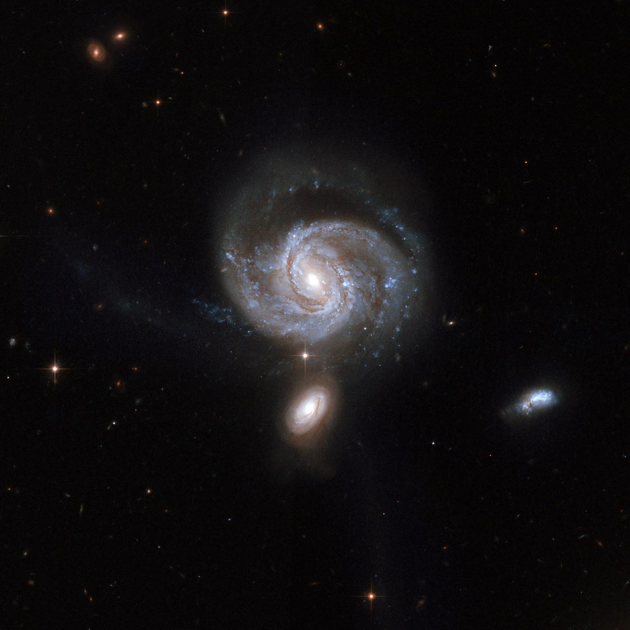 june-10-2019-galaxy-ngc-7674.jpg