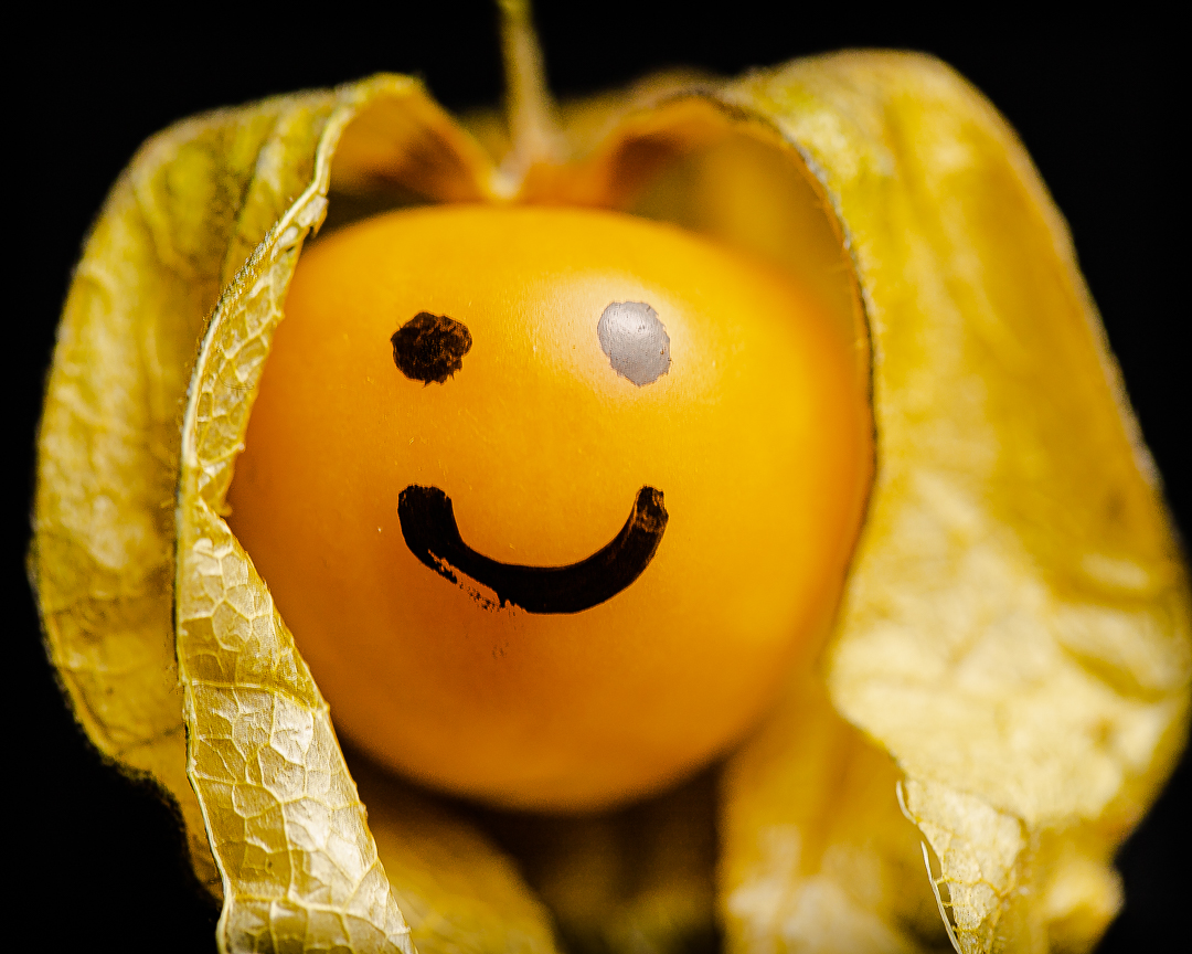 Emoji Princess Smiley blinking2-5507.jpg