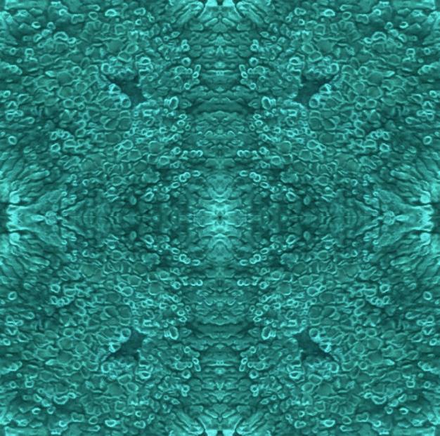 Lichen Tile (2).jpg